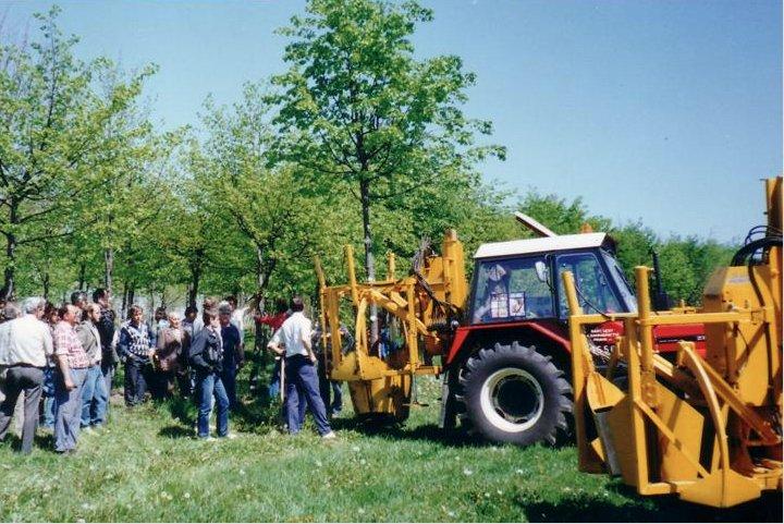zollatrici e ambiente le migliori partner per il ripopolamento degli alberi